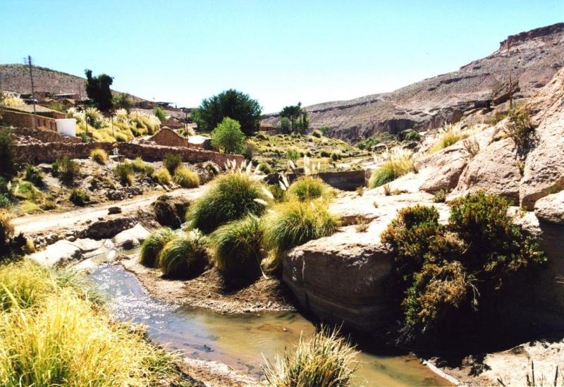 Atacama Caspana