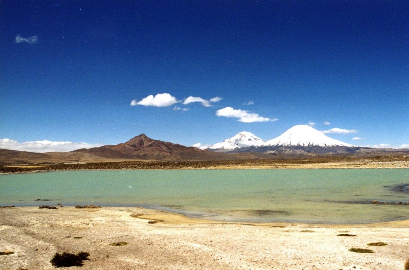 Lauca Vulkan mit See