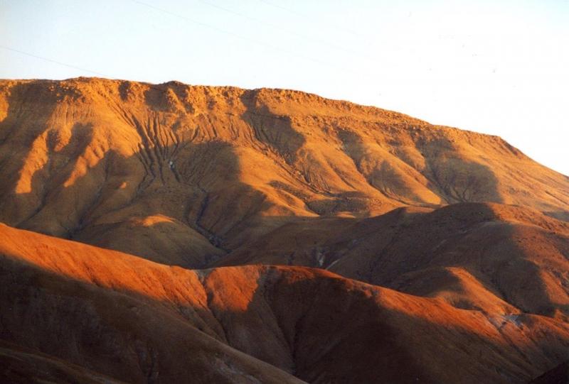 Lauca Rückfahrt nach Arica