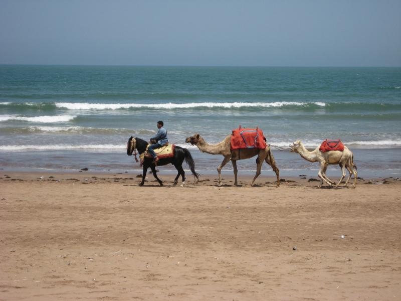 Karawane in El-Jadida