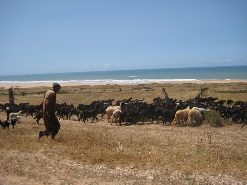 Auf den Weg nach Essaouria