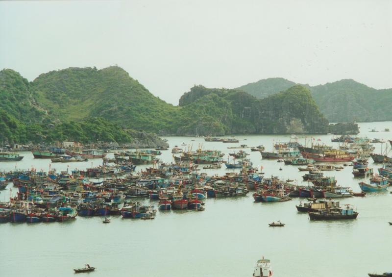 Halong Bay - Hafen