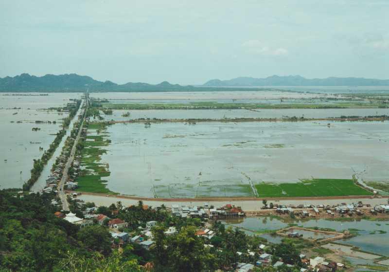 Mekong Delta - Überflutete Reisfelder