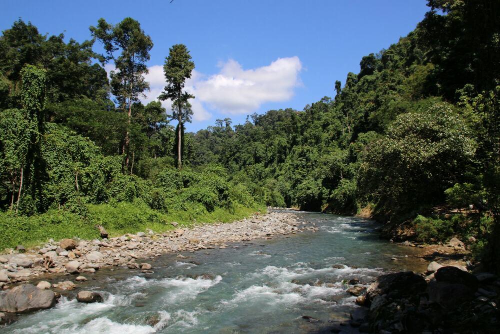 Bukit Lawang - Fluss