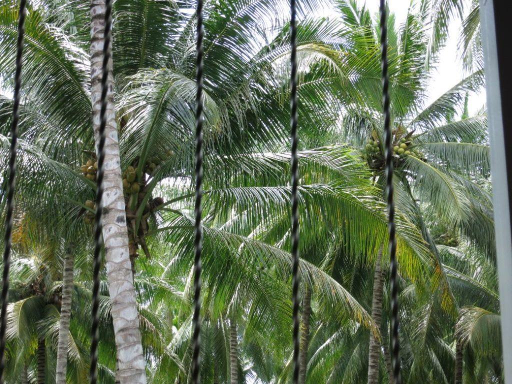 Fahrt von Manado nach Gorontalo