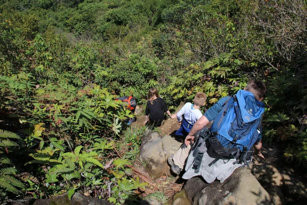 Gunung Sibayak - Abstieg