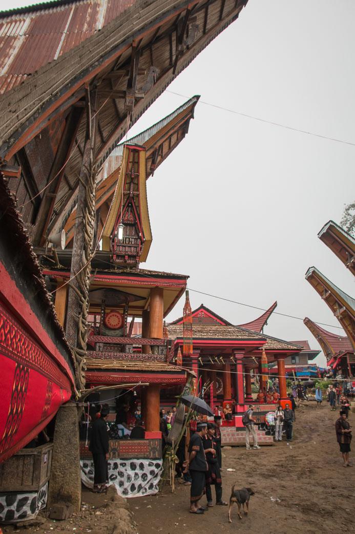 Tana Toraja Beeredigung