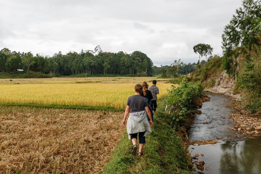 Wanderung durch die Reisfelder in Tana Toraja