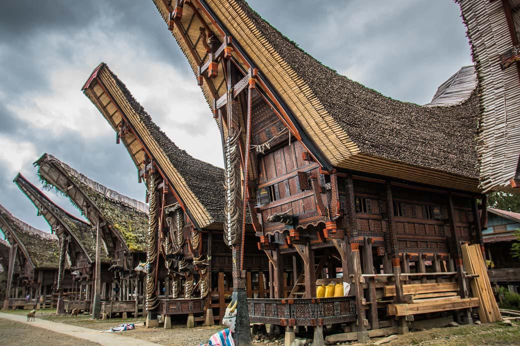 Ein Tongkonan (typische Toraja-Dorf)