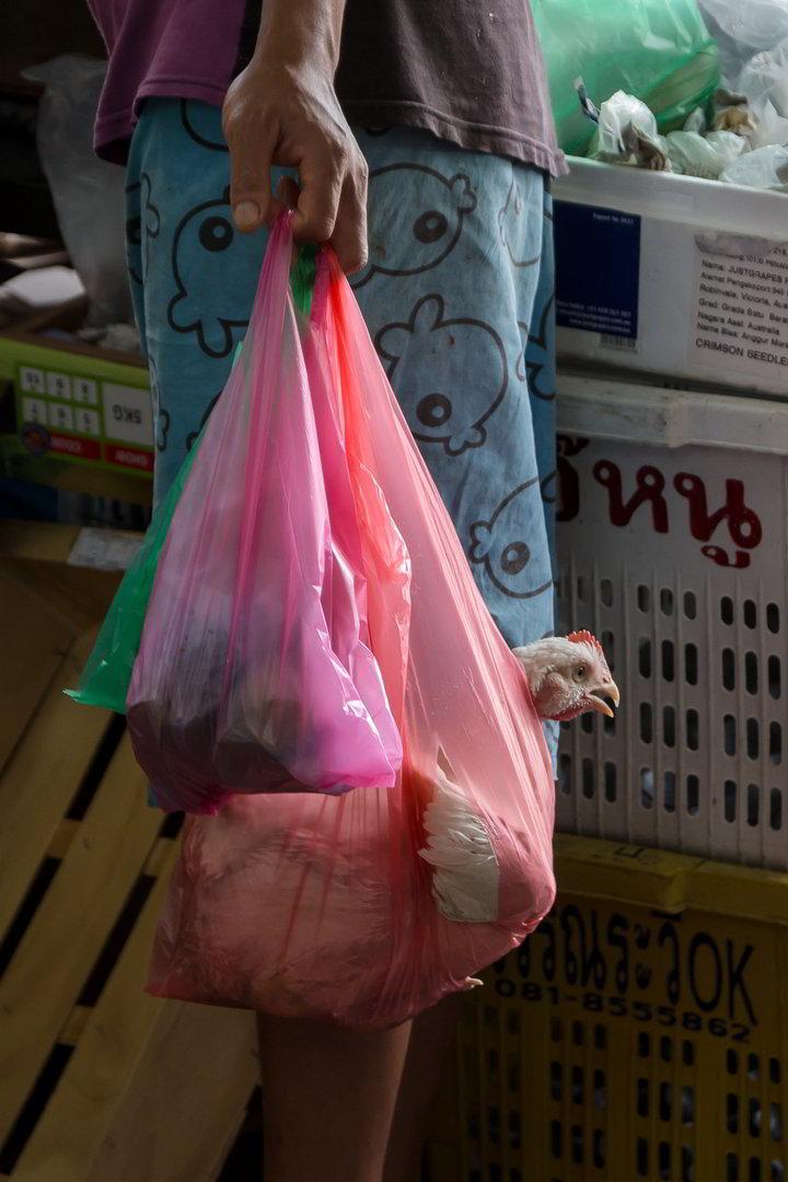 Huhn in Einkaufstüte, George Town, Malaysia