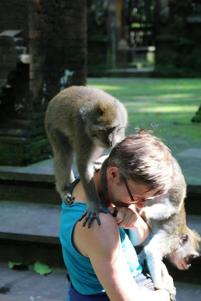 Sangeh - Alex mit Affen