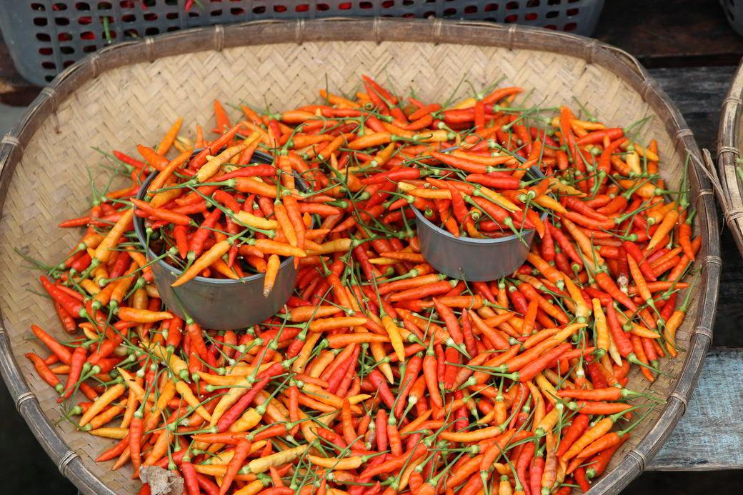 Tentena Markt Chilis