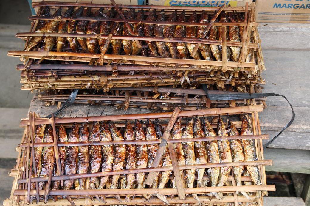 Tentena Markt geräucherte Fische