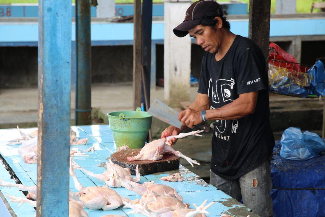 Tentena Markt Hühner