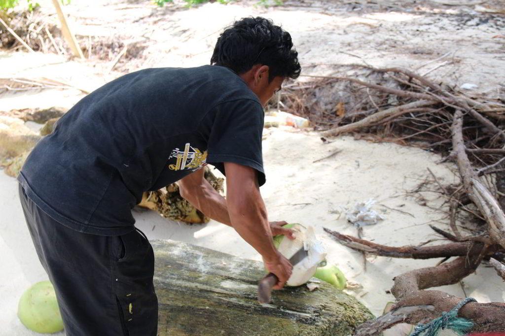 Togians Insel Taipi Uja öffnet Kokosnuss