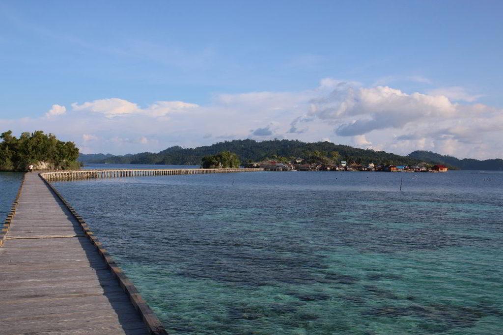 Togians Pulau Papan Steg