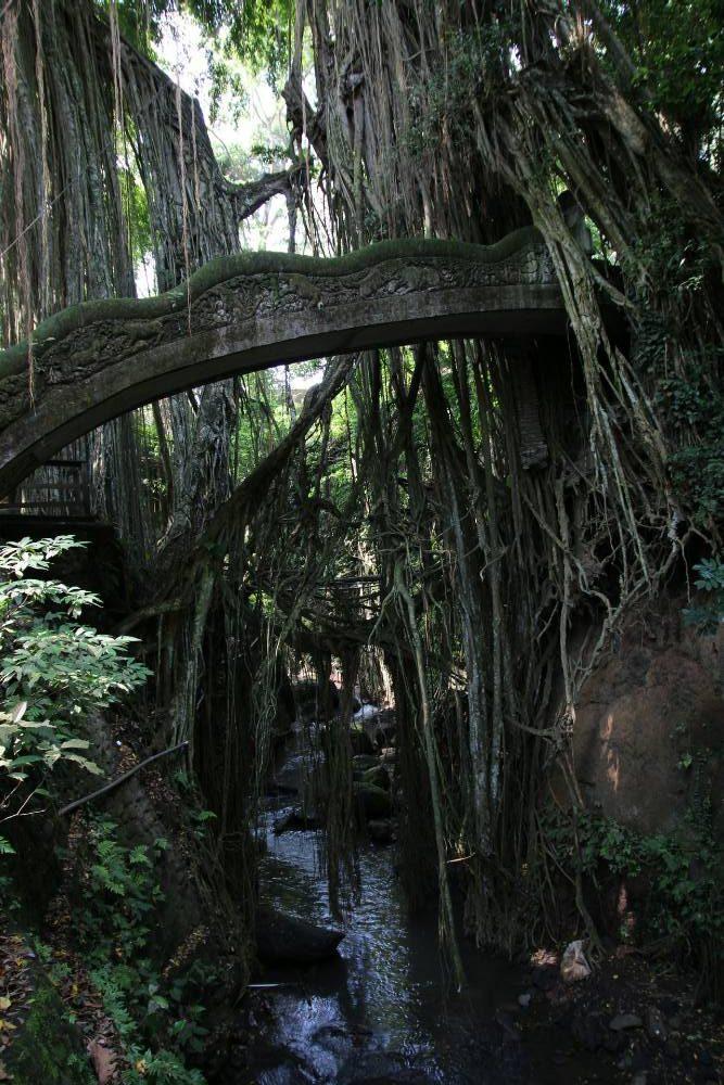 Ubud - Affenwald Brücke